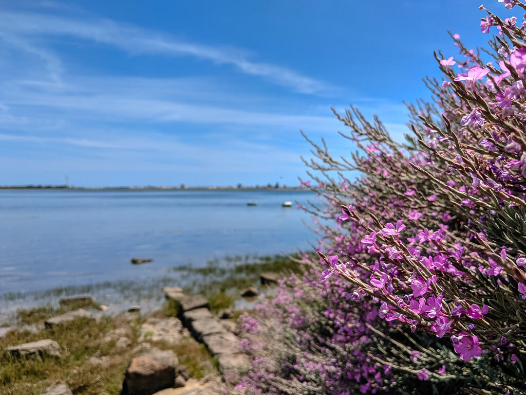 Hiking in the Ria Formosa